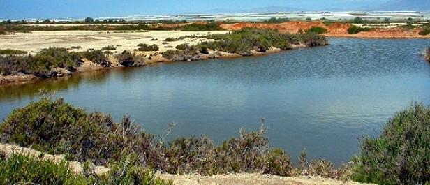 reserva-natural-roquetas